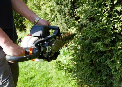 Gartenbau-drewes-barntrup-054A1297